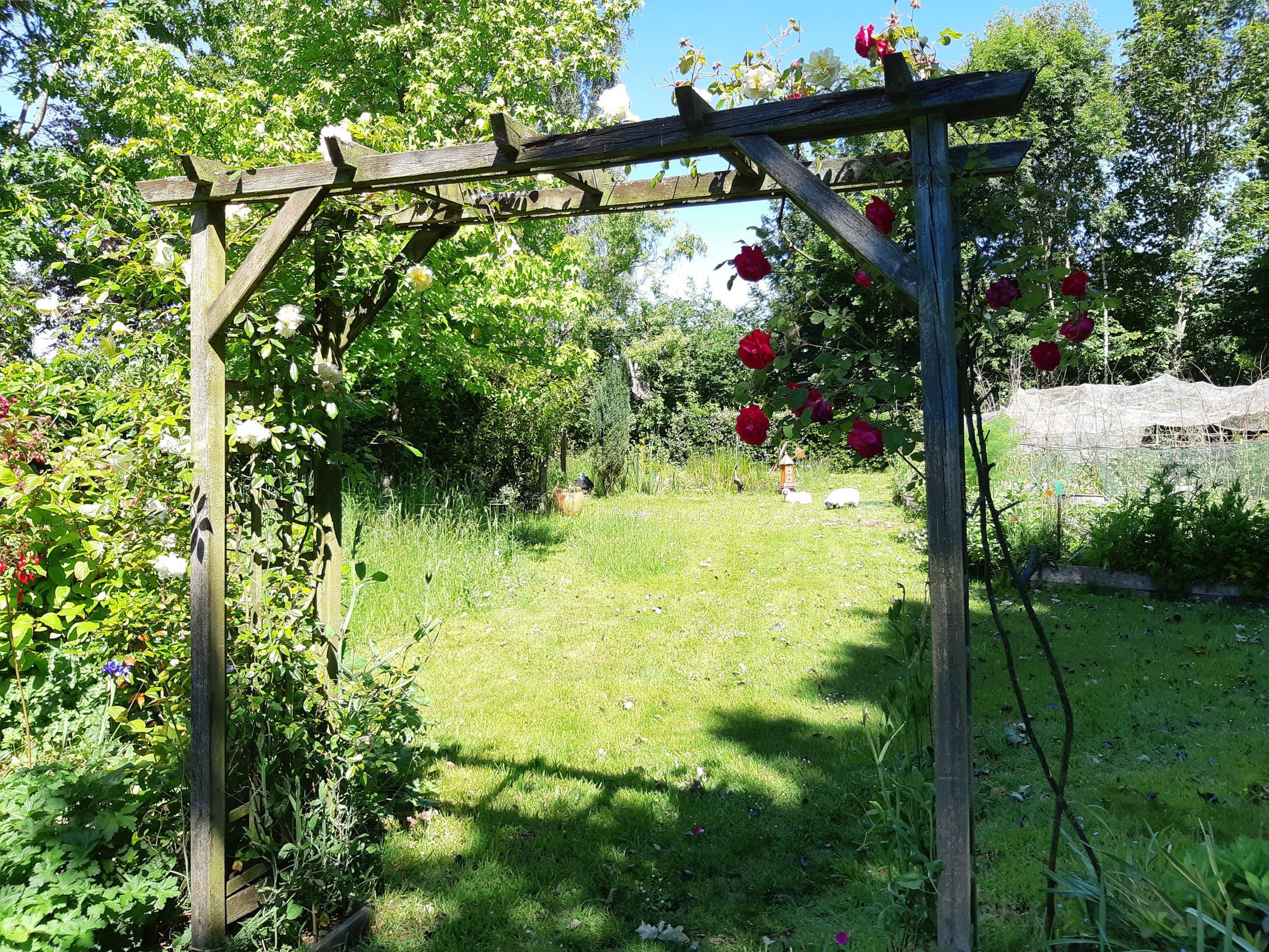 Lawns & wildflower areas at La Rabine Jardin